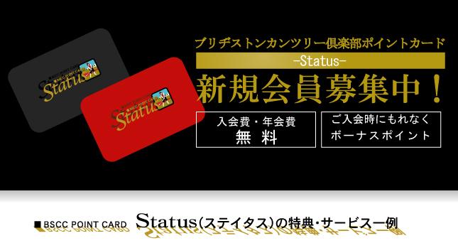 card_info